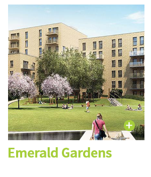 Emerald Gardens Case Study CIE Group