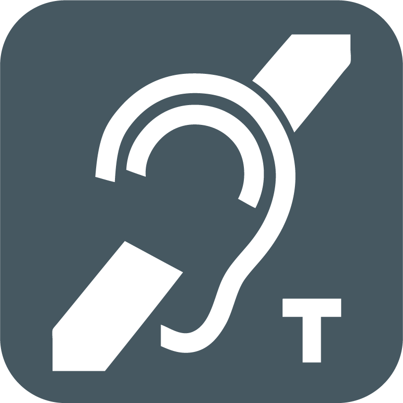 Induction Loops Icon