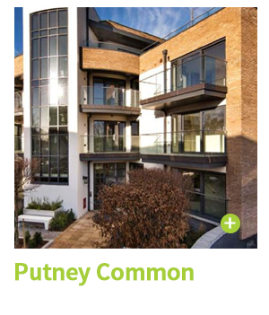 Putney Common Case Study CIE Group